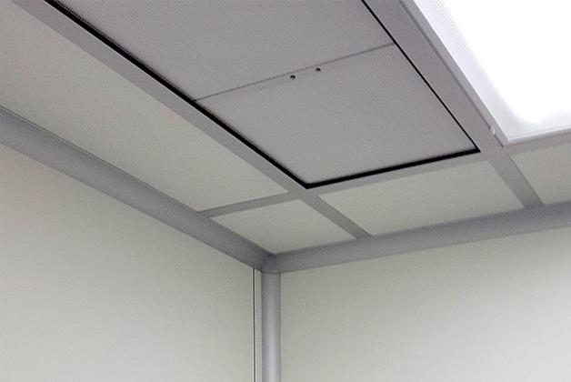 walkable ceilings